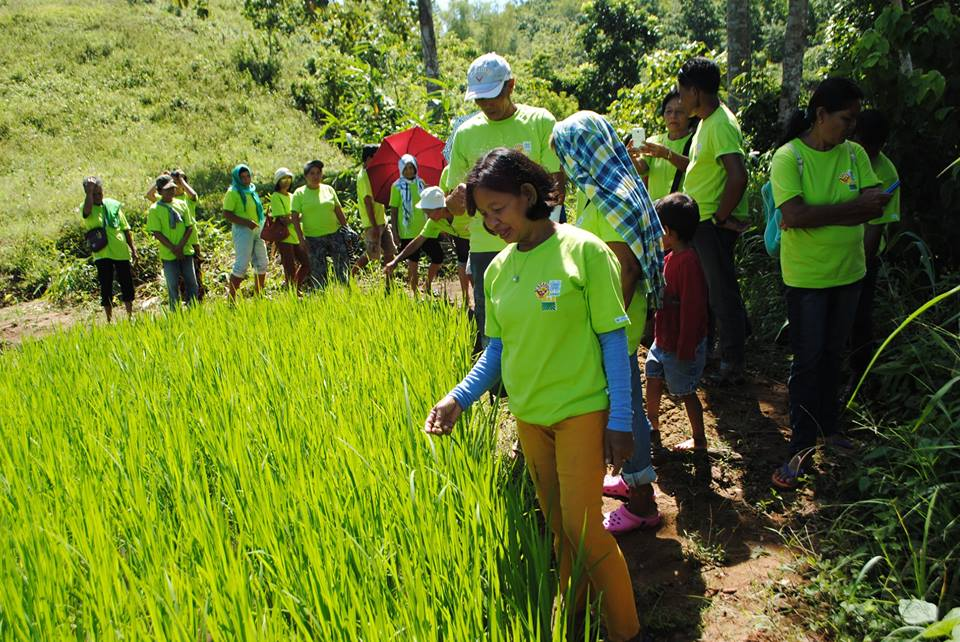 IN THE NEWS: Organic farming cooperators complete Department of Agrarian Reform's training on block farming production