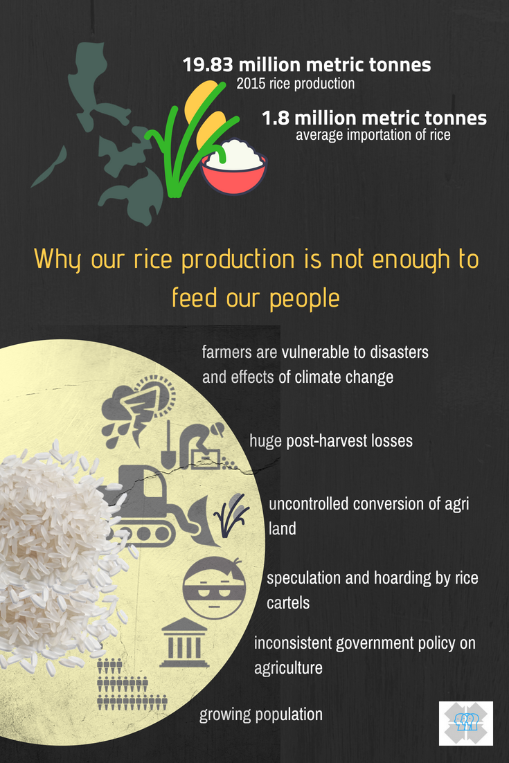 Why our rice is never enough